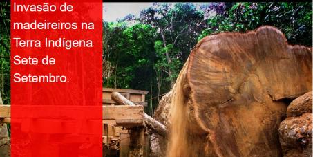 Garantia da segurança do povo indígena Paiter Suruí e da Terra Indígena Sete de Setembro!