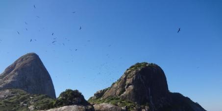Aprovação do  Parque Nacional Marinho do Arquipélago de Alcatrazes
