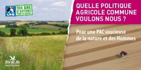 Pour une Politique Agricole Commune (PAC) soucieuse de la nature et des Hommes