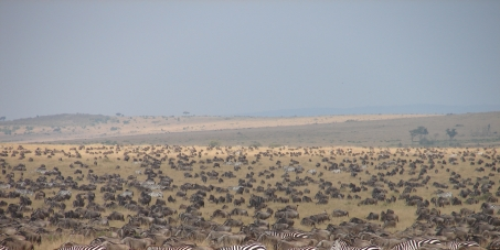 UNDER THREAT! Help us Save Kenya's game parks from potential mining.......