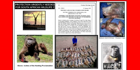 "URGENT APPEAL TO SAVE SOUTH AFRICAN WILDLIFE FROM ""CON""SERVATION!"