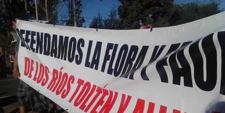 NO a la Hidroeléctrica los Aromos en los Ríos Tólten y Allipén