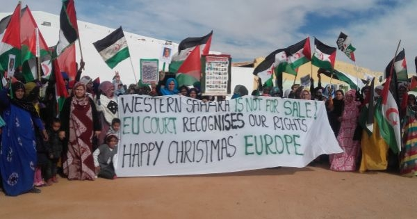 End EU free trade talks with Morocco regarding Western Sahara!