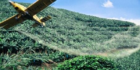 Pétition contre l'épandage aérien  de produits TOXIQUES en Guadeloupe
