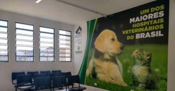 Pela implantação de um Hospital Veterinário Público Gratuito  em Blumenau SC