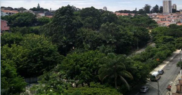 Petição em favor da retirada dos muros do Complexo Rapadura - Jardim Têxtil