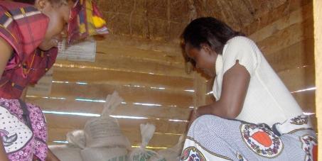 STOP A LOS Organismos Genéticamente Modificados!  Protección a los agricultores, ganaderos y consumidores de UGANDA!