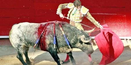 Sr. Ramiro Hernández, Alcalde de Guadalajara Jalisco México... No permita más corridas de toros en Guadalajara Jalisco.
