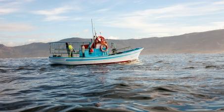 20 días para salvar nuestros océanos