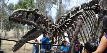 DinoPark, Museo Paleontológico, único en Latinoamérica, se quedó sin sede porque Castañeda quiere sembrar más cemento