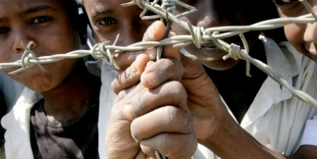 The Sinai Slave Trade
