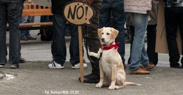 Ustawa antyterrorystyczna: NIE dla ograniczania naszych praw i wolności!
