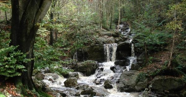 La commune de Durbuy: Non à la déforestation de la région pour un parc d'attractions
