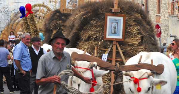 UNESCO: Riconoscimento di bene immateriale dell'umanità a feste del grano in italia