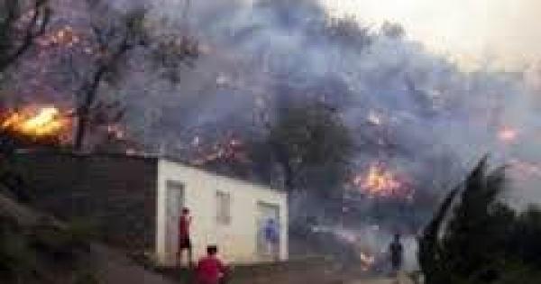 Halte aux feux de forêts en Kabylie