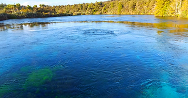 Takaka Fresh Water Advisory Group of Tasman District Council: Stop proposed risk of polluting New Zealand's largest fresh water spring.
