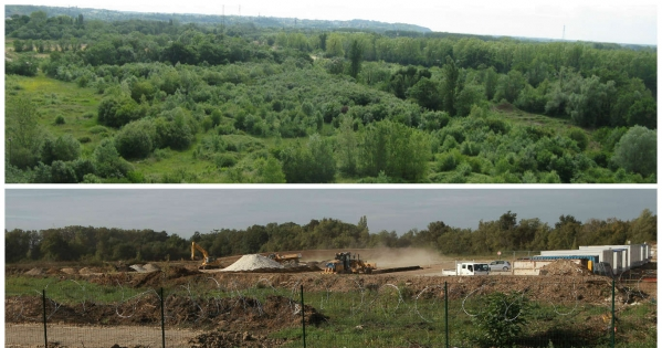 Prefecture de la Gironde et Ministere de l'Environnement : Sauver la zone humide de Villenave-d'Ornon avant destruction totale