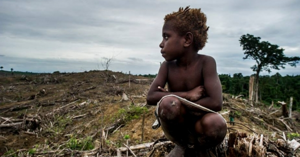 Help to end the genocide in West Papua