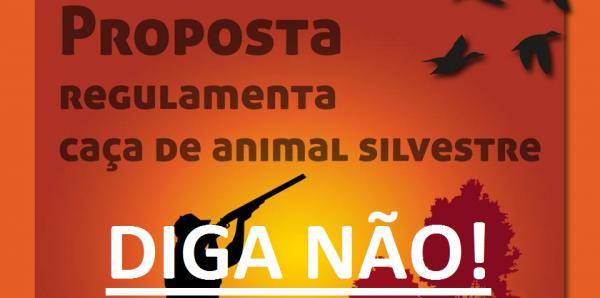 Deputados federais do Brasil: Rejeitem a PL 6268/16 que regulamenta caça a animais silvestres