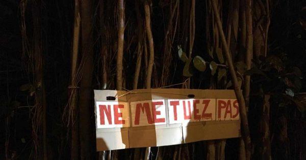 Habitants de la Réunion : Non à l abattage ! Oui au respect de la nature !