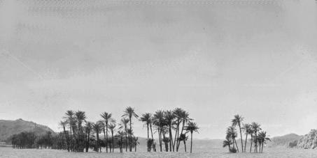 الحكومة المصرية : بإلغاء القرار  الجمهوري  الخاص بجعل  جزء  من أرض النوبة  منطقة عسكرية The Egyptian government: the