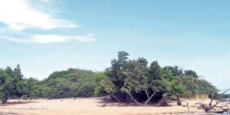Proposed Chinese Logistics Hub on Goats Island Jamaica