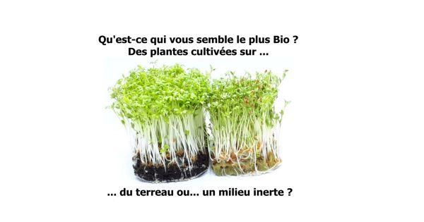 Certifiez Bio les micro-pousses cultivées dans du terreau et pas sur un milieu inerte !