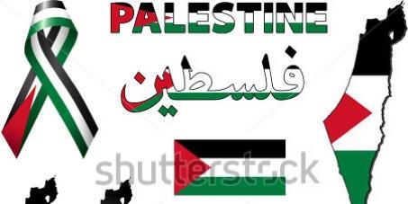 ONU - Conselho de Direitos Humanos: Saibam que apoiamos a ONU na investigação dos crimes de Israel em Gaza
