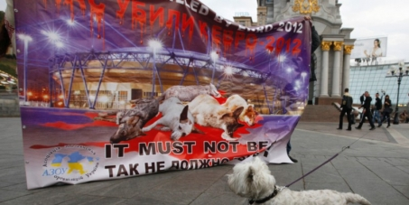 Stop Dog Killing in Ukraine and in Baku! (UEFA European Championship and ESC)!