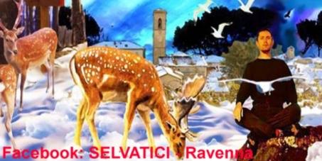 Daini vivi. Gli animalisti fermano i cacciatori dall'abbattimento di 67 daini del Parco di Classe a Ravenna. L'area naturalistica verrà come da noi richiesto recintata e gestita dalla polizia forestale.