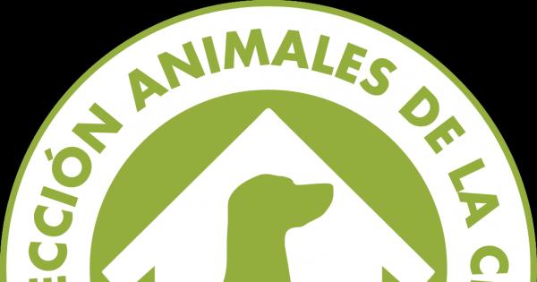 Asamblea Nacional del Poder Popular de Cuba: Que promulguen una Ley para la Protección de Animales