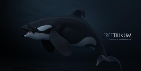 SeaWorld: Blackfish :Free Tilikum