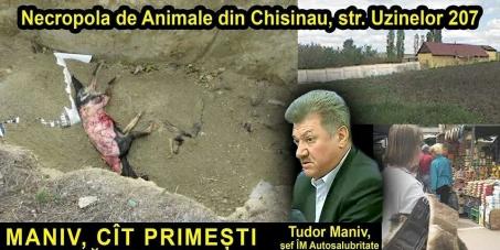 Генуральный прокурор Республики Молдова Корнелиу Гурин : STOP SADISTS! Запретить садистские убийства собак,дать землю,открыть приют