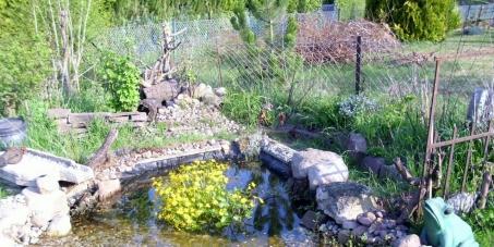 Stoppt den Abriss unserer Kleingartenkolonie in Hannover Lange Feld Str. !