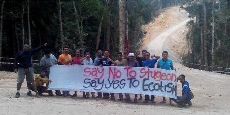 Government of Malaysia and Government of Pahang: We call on you to Stop Sturgeon Project a.k.a Caviar Park in Kuala Tahan.