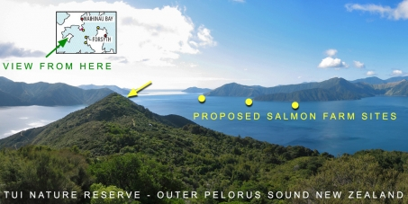 Save our Sounds - no new salmon farms