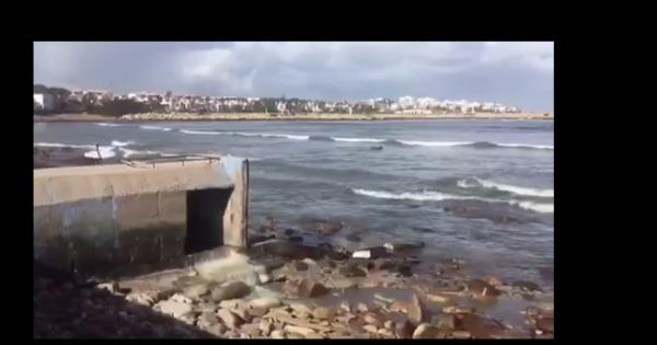 Autorités Sanitaires / Ministère de l'environnement: SOS Ptit Port - Dar Bouazza contre l'écoulement des eaux usées dans l'ocean
