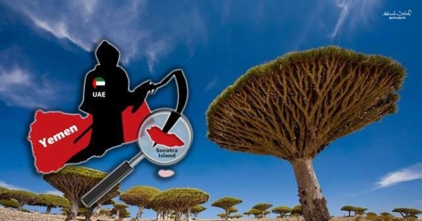 UNESCO and the UNITED NATIONS HELP US SAVE SOCOTRA (YEMEN) FROM UAE INTERVENTION & DAMAGES