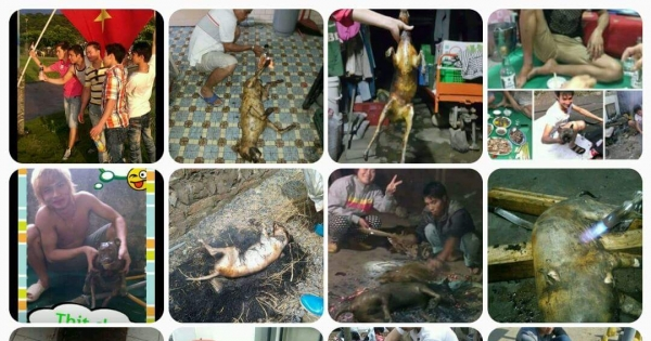 Vietnamese workers coming to Taiwan. Torture dogs and eat them. Vietnam your workers are a disgrace.