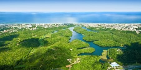 Secretário do Meio Ambiente do Estado da Bahia: Delimitar o Parque Metropolitano de Pituaçu na cidade de Salvador