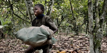2 cent mehr auf jede tafel schokolade stoppt die. Black Bedroom Furniture Sets. Home Design Ideas