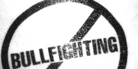 Stop The Return Of Bullfighting to TV