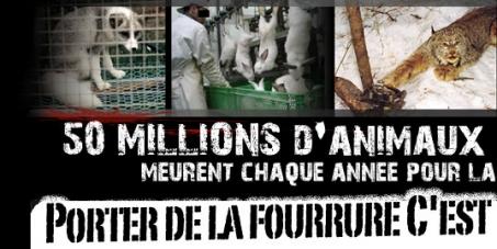 Joke Schauvliege,ministre de l'Environnement des Flandres Orientales : L'arrêt des élevages d'animaux pour leur fourrure en Belgique