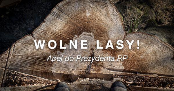Zostawcie lasy w spokoju... Apel do Prezydenta RP.