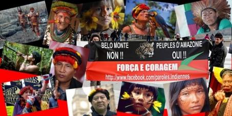 DETENER LAS MATANZAS DE LOS PUEBLOS INDÍGENAS DE AMAZONAS! Oficial Força e Coragem