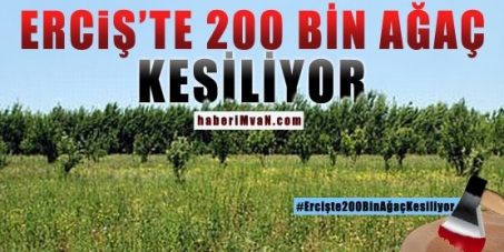 Stop the Massacre of 200.000 Trees