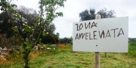 Proteggi il Salento! NO all'obbligo di trattamenti chimici contro la morìa degli ulivi