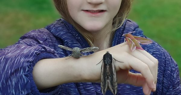 National Trust! Please don't scrap Outdoor Learning and Education!
