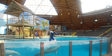 All dolphinaria must be closed in Europe !
