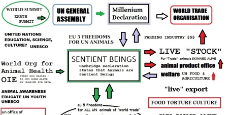 Sentient Beings to have their own line in The Millenium Declaration